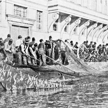 Yüzyıllardır Süregelen Gelenek; İstanbul'da Balıkçılık