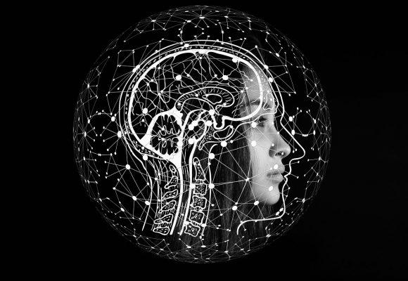 Beynin Duygusal Hayatı