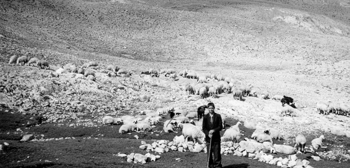 Anadolu'nun Göçmen Kuşları: Yörükler
