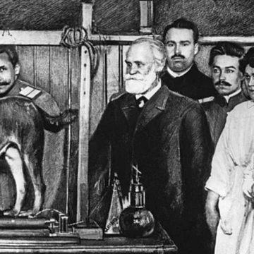Pavlov'un Köpeği: Klasik Koşullanma
